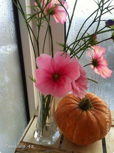 Добрый день, дорогие мастерицы! Выкладываю на ваше обсуждение мои вымученные цветы! Лепила их и занималась самоедством!  Всем была недовольна! И формой и цветом и тд... Но в итого.... понравилось. Фото много..... фото 15