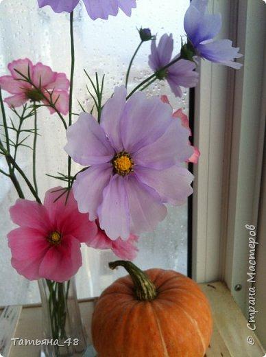 Добрый день, дорогие мастерицы! Выкладываю на ваше обсуждение мои вымученные цветы! Лепила их и занималась самоедством!  Всем была недовольна! И формой и цветом и тд... Но в итого.... понравилось. Фото много..... фото 16