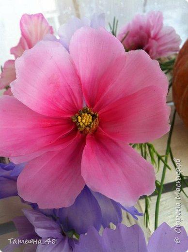 Добрый день, дорогие мастерицы! Выкладываю на ваше обсуждение мои вымученные цветы! Лепила их и занималась самоедством!  Всем была недовольна! И формой и цветом и тд... Но в итого.... понравилось. Фото много..... фото 19