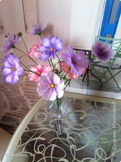Добрый день, дорогие мастерицы! Выкладываю на ваше обсуждение мои вымученные цветы! Лепила их и занималась самоедством!  Всем была недовольна! И формой и цветом и тд... Но в итого.... понравилось. Фото много..... фото 9