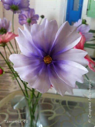 Добрый день, дорогие мастерицы! Выкладываю на ваше обсуждение мои вымученные цветы! Лепила их и занималась самоедством!  Всем была недовольна! И формой и цветом и тд... Но в итого.... понравилось. Фото много..... фото 5