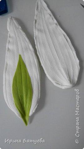 Это продолжение мастер-класса по белой лилии. В первой части мы сделали цветок лилии: http://stranamasterov.ru/node/1055126 . Здесь мы будем учиться делать листики, бутоны, а также собирать все это в ветку. фото 5