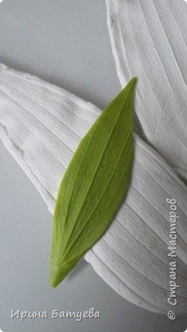 Это продолжение мастер-класса по белой лилии. В первой части мы сделали цветок лилии: http://stranamasterov.ru/node/1055126 . Здесь мы будем учиться делать листики, бутоны, а также собирать все это в ветку. фото 6