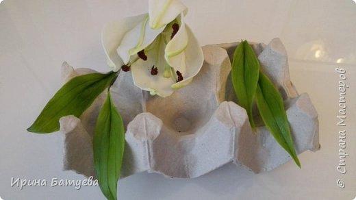 Это продолжение мастер-класса по белой лилии. В первой части мы сделали цветок лилии: http://stranamasterov.ru/node/1055126 . Здесь мы будем учиться делать листики, бутоны, а также собирать все это в ветку. фото 3