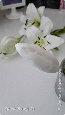 Это продолжение мастер-класса по белой лилии. В первой части мы сделали цветок лилии: http://stranamasterov.ru/node/1055126 . Здесь мы будем учиться делать листики, бутоны, а также собирать все это в ветку. фото 21