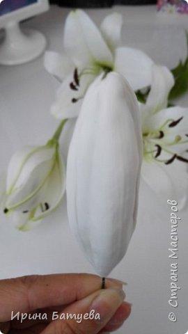 Это продолжение мастер-класса по белой лилии. В первой части мы сделали цветок лилии: http://stranamasterov.ru/node/1055126 . Здесь мы будем учиться делать листики, бутоны, а также собирать все это в ветку. фото 22