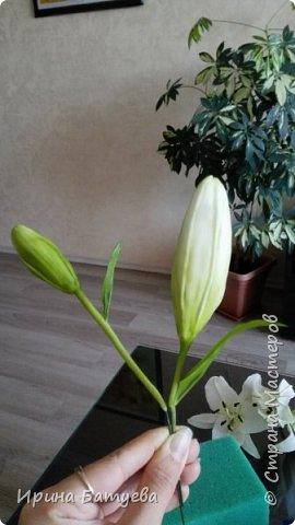 Это продолжение мастер-класса по белой лилии. В первой части мы сделали цветок лилии: http://stranamasterov.ru/node/1055126 . Здесь мы будем учиться делать листики, бутоны, а также собирать все это в ветку. фото 25