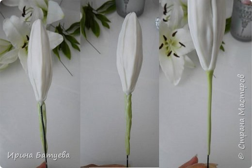 Это продолжение мастер-класса по белой лилии. В первой части мы сделали цветок лилии: http://stranamasterov.ru/node/1055126 . Здесь мы будем учиться делать листики, бутоны, а также собирать все это в ветку. фото 23