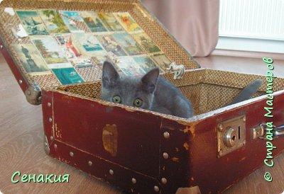 Здравствуйте, мои дорогие жители Страны мастеров. Хочу вам рассказать в фотографиях как реставрировала старый советский чемодан под хранилище для фотографий)) Вот таким мне его принесли. фото 2