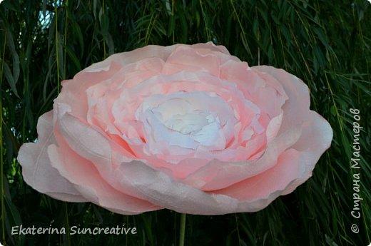 Весной, открыла для себя мир гигантских цветов! Я дизайнер цветочных аксессуаров,подруга попросила сделать объемный цветок, только гигантского размера.  И после первого цветочка, я поняла, что это очень увлекаетельное занятие!  Мои работы ниже.  Рада вашим отзывам!  фото 3