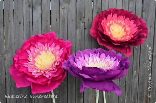 Весной, открыла для себя мир гигантских цветов! Я дизайнер цветочных аксессуаров,подруга попросила сделать объемный цветок, только гигантского размера.  И после первого цветочка, я поняла, что это очень увлекаетельное занятие!  Мои работы ниже.  Рада вашим отзывам!