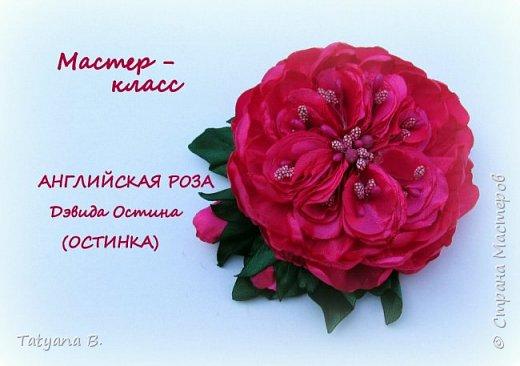 Английская роза Дэвида Остина из лент. Брошь