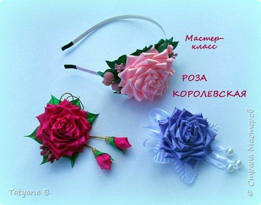 Роза королевская с острыми лепестками.