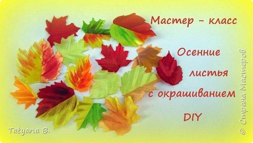 Осенние листья из лент с окрашиванием
