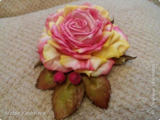 Роза Кэтрин фото 6
