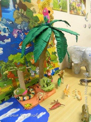 Юг-север в детском саду фото 2