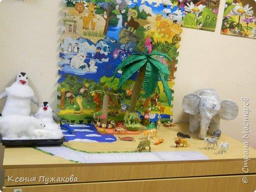 Юг-север в детском саду фото 3
