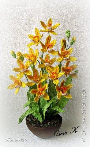 У меня немного наплелось)))  орхидея Ваниль выполнена на форуме Радуга рукоделий под руководством Натальи -Кузина фото 1