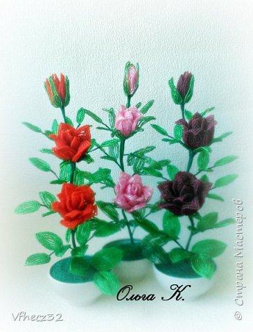 У меня немного наплелось)))  орхидея Ваниль выполнена на форуме Радуга рукоделий под руководством Натальи -Кузина фото 2