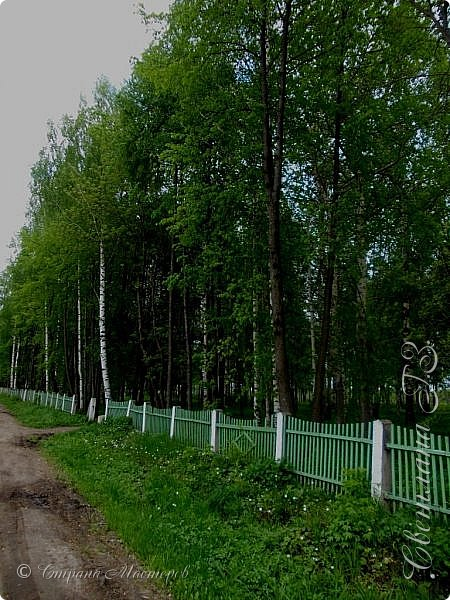 Доброго всем времени суток,приглашаю вас в гости!Я живу в красивом посёлке Мурыгино,недалеко от города Кирова (Вятка). фото 17