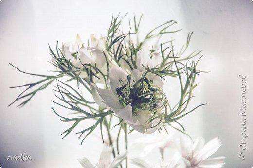 наконец-то закончила свой финальный проект в рамках Перезагрузки 2,0. + дополнила нигеллами по мк Мурзилки. Все цветы, кроме вероники и бутонов васильков - зефирный фом фото 6