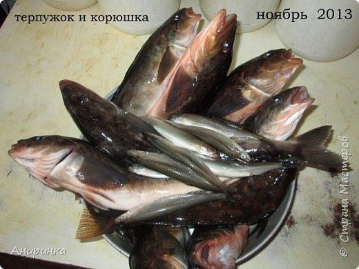 Наконец-то восстановили жесткий диск - такие вот вкусняшки добываем во Владике и окрестностях:))))))))))))))))))) фото 2