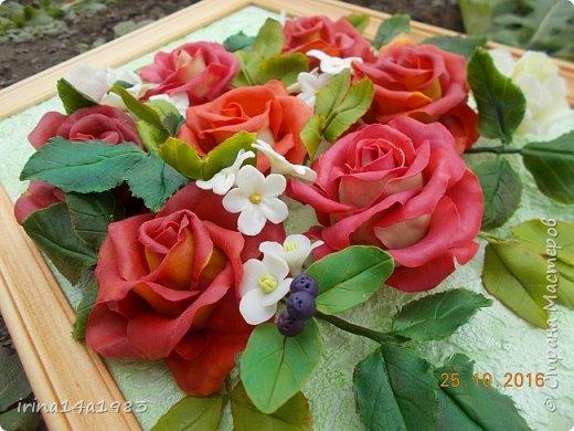Всем добрый день!!!! И снова у меня розы(набиваю руку). Все розы двуцветные, кроме самой темной. Спасибо Наталье Бурцевой, впервые увидела у нее. Но раскатываю лепестки по своему.  фото 13