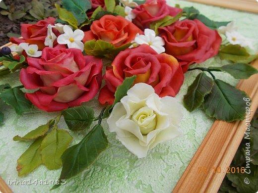 Всем добрый день!!!! И снова у меня розы(набиваю руку). Все розы двуцветные, кроме самой темной. Спасибо Наталье Бурцевой, впервые увидела у нее. Но раскатываю лепестки по своему.  фото 5
