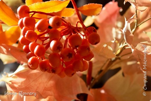 Осенние композиции с рябиной фото 3