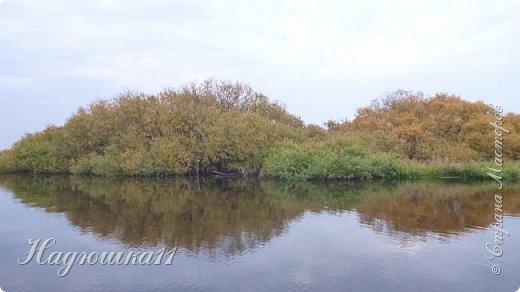 В начале октября выдалась хорошая погодка на выходных, и муж с товарищем поехали на речку Девятка на рыбалку. фото 1