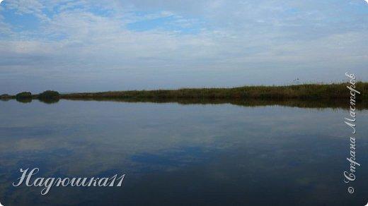 В начале октября выдалась хорошая погодка на выходных, и муж с товарищем поехали на речку Девятка на рыбалку. фото 23