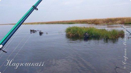 В начале октября выдалась хорошая погодка на выходных, и муж с товарищем поехали на речку Девятка на рыбалку. фото 25