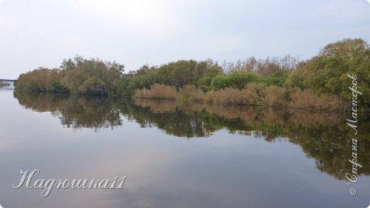 В начале октября выдалась хорошая погодка на выходных, и муж с товарищем поехали на речку Девятка на рыбалку. фото 29