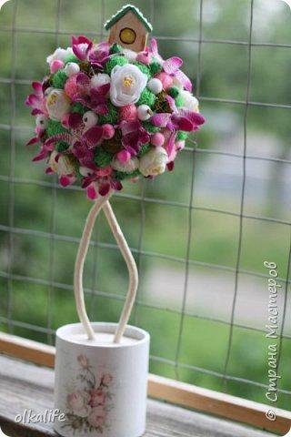 """После долгого ничего не деланья,ко мне пришла моя двоюродная сестра с просьбой сделать топиарии,красиво и удешивить процесс)))У её мамы(моей тёти) юбилей тематический """"Сад"""" Она вроде как садовница(но она по жизни садовница),гости должны были одеть на себя какой то цветок  и сестра на память решила сделать подарки на память от юбиляра.Так как это садовница подарки сестра придумала топиарчики.)))В семье руками что то делаю только я ,вот и попросила меня)))Я конечно не могла отказать и принялась  за работу.В каждую семью по топику. .Делала их разными.Не все сфоткала. фото 3"""