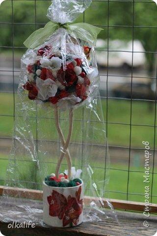 """После долгого ничего не деланья,ко мне пришла моя двоюродная сестра с просьбой сделать топиарии,красиво и удешивить процесс)))У её мамы(моей тёти) юбилей тематический """"Сад"""" Она вроде как садовница(но она по жизни садовница),гости должны были одеть на себя какой то цветок  и сестра на память решила сделать подарки на память от юбиляра.Так как это садовница подарки сестра придумала топиарчики.)))В семье руками что то делаю только я ,вот и попросила меня)))Я конечно не могла отказать и принялась  за работу.В каждую семью по топику. .Делала их разными.Не все сфоткала. фото 21"""