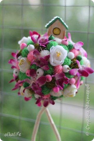"""После долгого ничего не деланья,ко мне пришла моя двоюродная сестра с просьбой сделать топиарии,красиво и удешивить процесс)))У её мамы(моей тёти) юбилей тематический """"Сад"""" Она вроде как садовница(но она по жизни садовница),гости должны были одеть на себя какой то цветок  и сестра на память решила сделать подарки на память от юбиляра.Так как это садовница подарки сестра придумала топиарчики.)))В семье руками что то делаю только я ,вот и попросила меня)))Я конечно не могла отказать и принялась  за работу.В каждую семью по топику. .Делала их разными.Не все сфоткала. фото 8"""