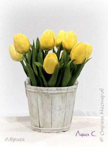 Цветы для интерьера. фото 9