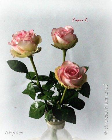 Цветы для интерьера. фото 5