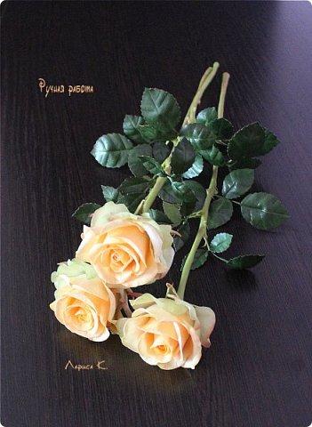 Цветы для интерьера. фото 1