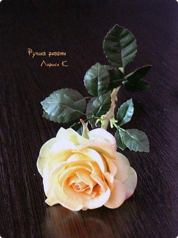 Цветы для интерьера. фото 4