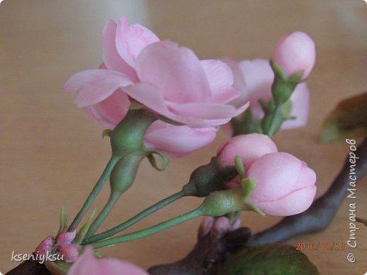 сакура из полимерной глины фото 7