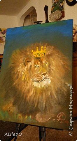 Tak u menia estj syn , rozdion v Auguste- pod znakom LVA...Ja osmatrivala fotografii lvov v Internete, nabliudala lva v zooparke. Palucilsia staryj, umnyj i nemnozko gordyj Leon King.  фото 1