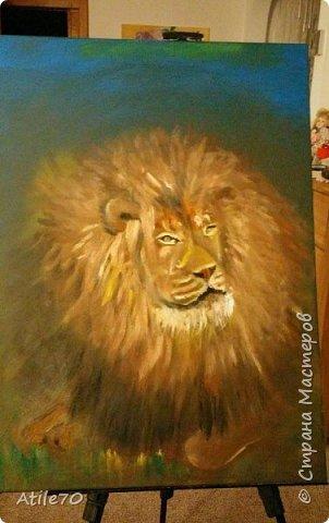 Tak u menia estj syn , rozdion v Auguste- pod znakom LVA...Ja osmatrivala fotografii lvov v Internete, nabliudala lva v zooparke. Palucilsia staryj, umnyj i nemnozko gordyj Leon King.  фото 3