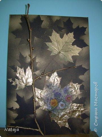 """Заинтересовала работа """"Декупаж на кленовом листочке"""" http://stranamasterov.ru/node/1054035 . Решила тоже попробовать. Искала салфетки. чтобы хоть как-то отвечали теме осени. Но попадались всё с букетами. Остановилась на этой салфетке, цветы вроде на астры похожи и не такие яркие, сочные. Один лист на картоне выглядит как-то сиротливо. Решила сделать ещё один - черно-белая птичка сидит на цветущей (сине-голубого цвета) ветке.  Положила два листка на картон. Всё равно что-то не то.  фото 4"""