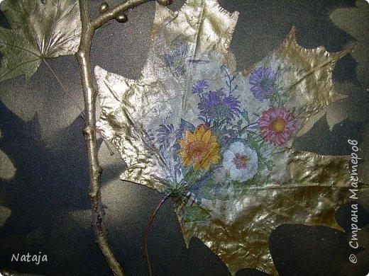 """Заинтересовала работа """"Декупаж на кленовом листочке"""" http://stranamasterov.ru/node/1054035 . Решила тоже попробовать. Искала салфетки. чтобы хоть как-то отвечали теме осени. Но попадались всё с букетами. Остановилась на этой салфетке, цветы вроде на астры похожи и не такие яркие, сочные. Один лист на картоне выглядит как-то сиротливо. Решила сделать ещё один - черно-белая птичка сидит на цветущей (сине-голубого цвета) ветке.  Положила два листка на картон. Всё равно что-то не то.  фото 5"""