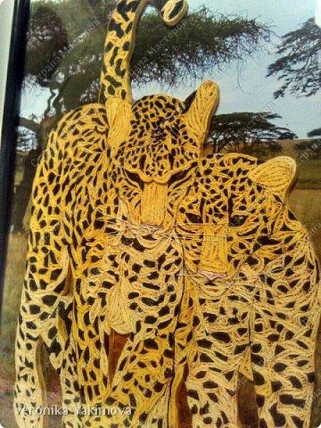 Вот такие милые леопарды у меня получились. фото 9