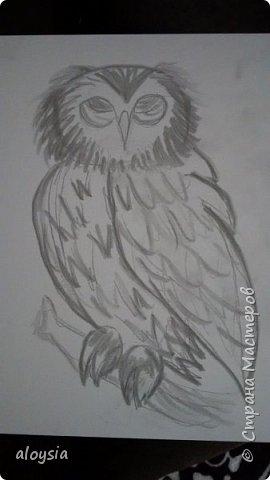 Добрый вечер! Вот решила сделать такую сову из шпаклевки. Сначала нарисовала. Получилось не очень, но решила оставить как есть. фото 1