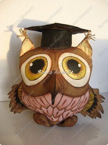 """Всем доброго дня!!! Прошу любить и жаловать """"Ученая сова"""".  Игрушка по МК А. Голеневой. фото 1"""