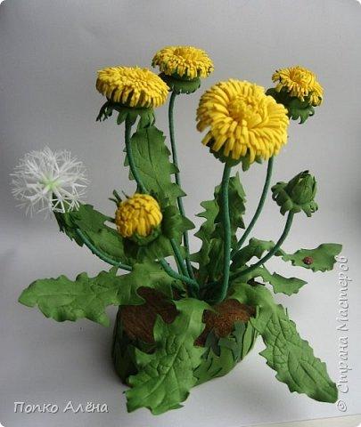 Здравствуйте, Мастера и мастерицы! Представляю Вам цветы из фоамирана.  Одуванчики. фото 1