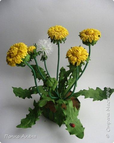 Здравствуйте, Мастера и мастерицы! Представляю Вам цветы из фоамирана.  Одуванчики. фото 2